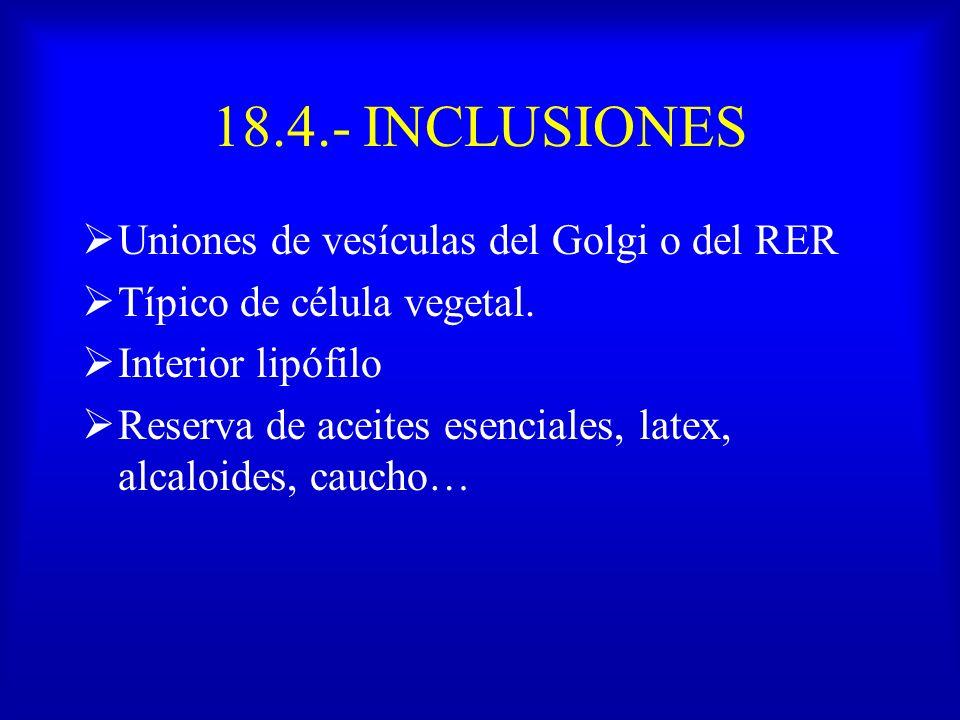 18.4.- INCLUSIONES Uniones de vesículas del Golgi o del RER