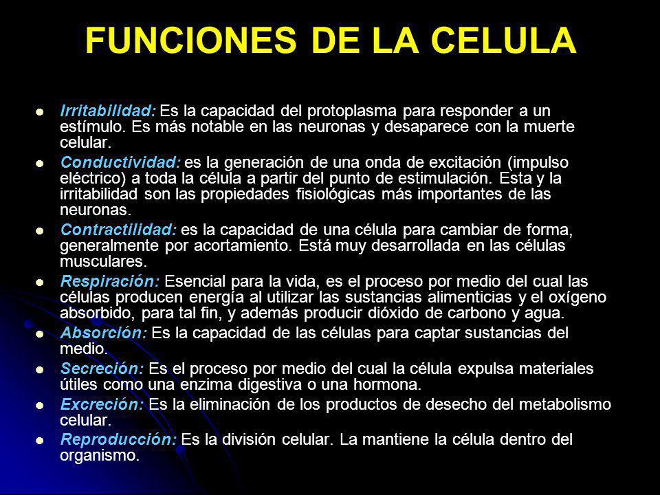 FUNCIONES DE LA CELULA