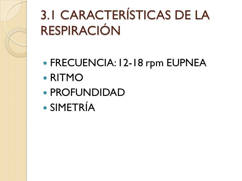 3.1 CARACTERÍSTICAS DE LA RESPIRACIÓN