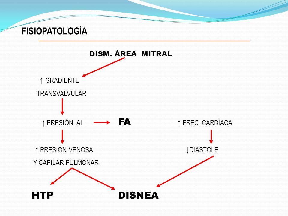FISIOPATOLOGÍA DISM. ÁREA MITRAL HTP DISNEA ↑ GRADIENTE TRANSVALVULAR