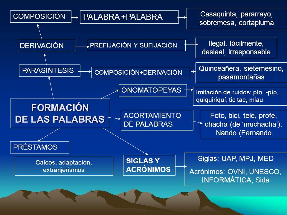 FORMACIÓN DE LAS PALABRAS