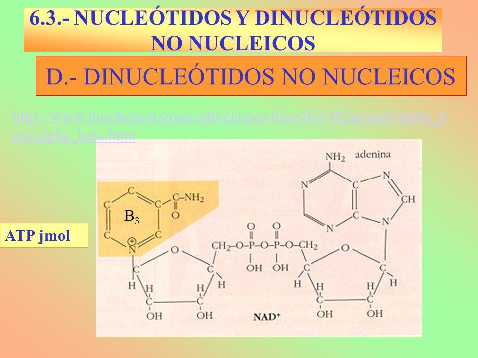 D.- DINUCLEÓTIDOS NO NUCLEICOS