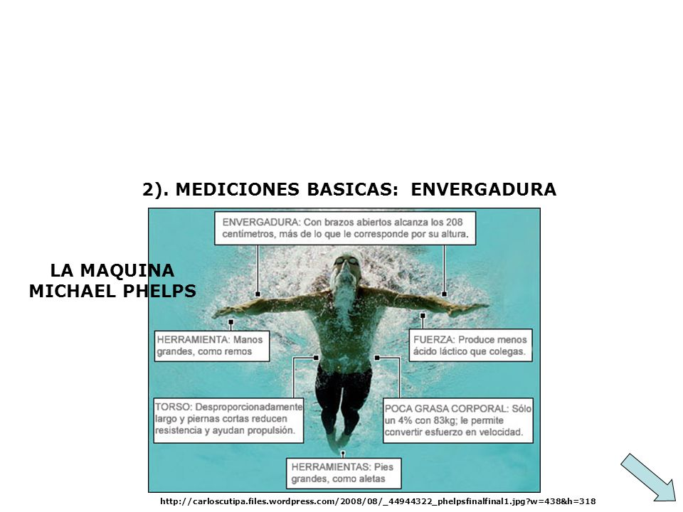 2). MEDICIONES BASICAS: ENVERGADURA LA MAQUINA MICHAEL PHELPS