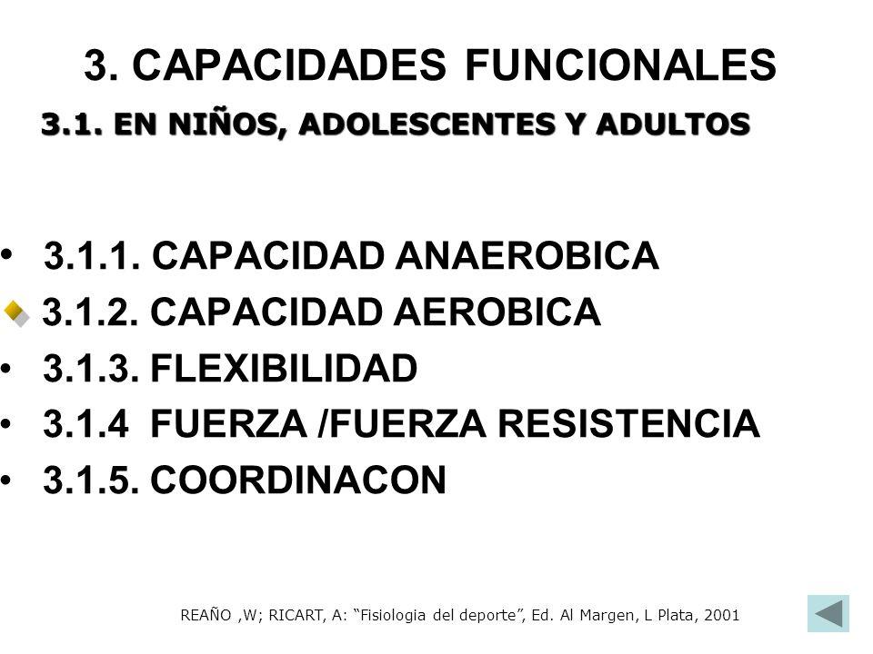 3. CAPACIDADES FUNCIONALES