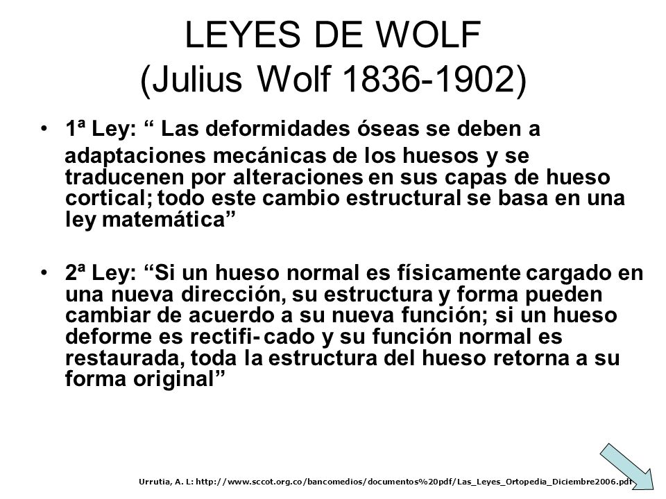 LEYES DE WOLF (Julius Wolf 1836-1902)