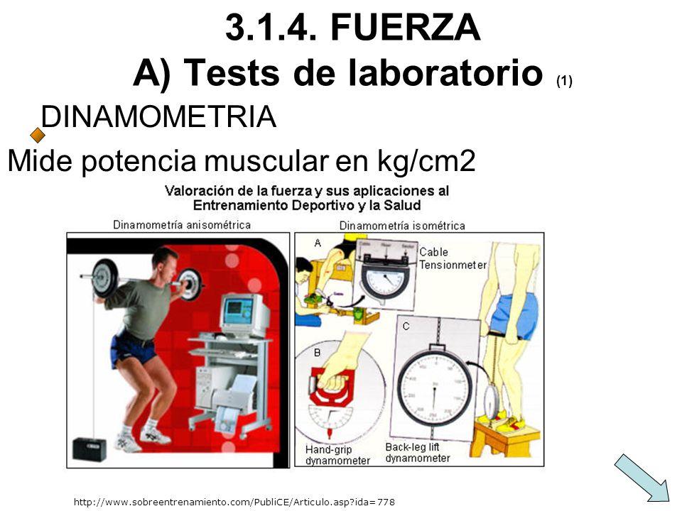 3.1.4. FUERZA A) Tests de laboratorio (1)