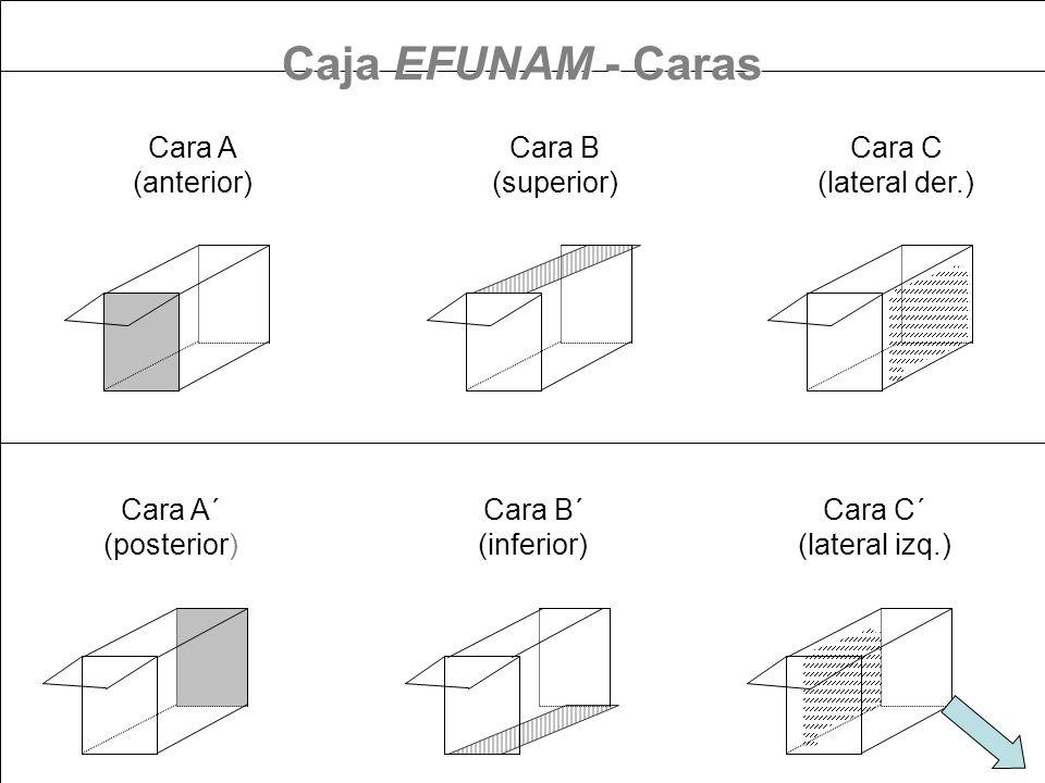 Caja EFUNAM - Caras Cara A (anterior) Cara B (superior) Cara C