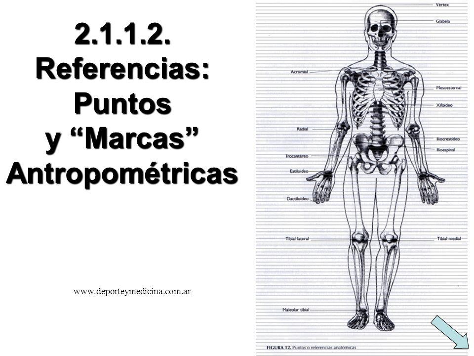 2.1.1.2. Referencias: Puntos y Marcas Antropométricas