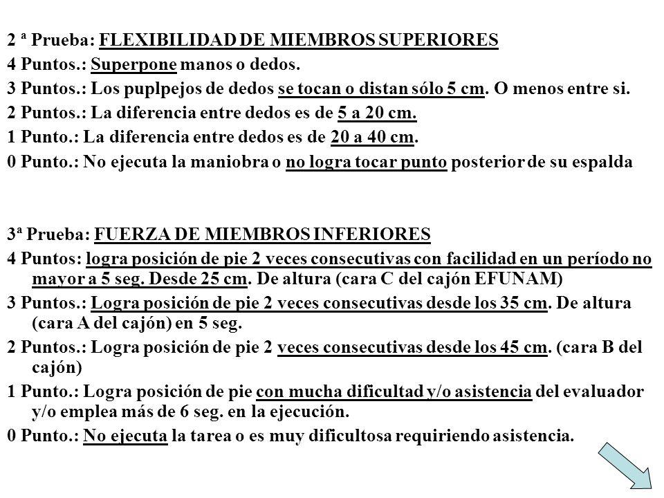 2 ª Prueba: FLEXIBILIDAD DE MIEMBROS SUPERIORES