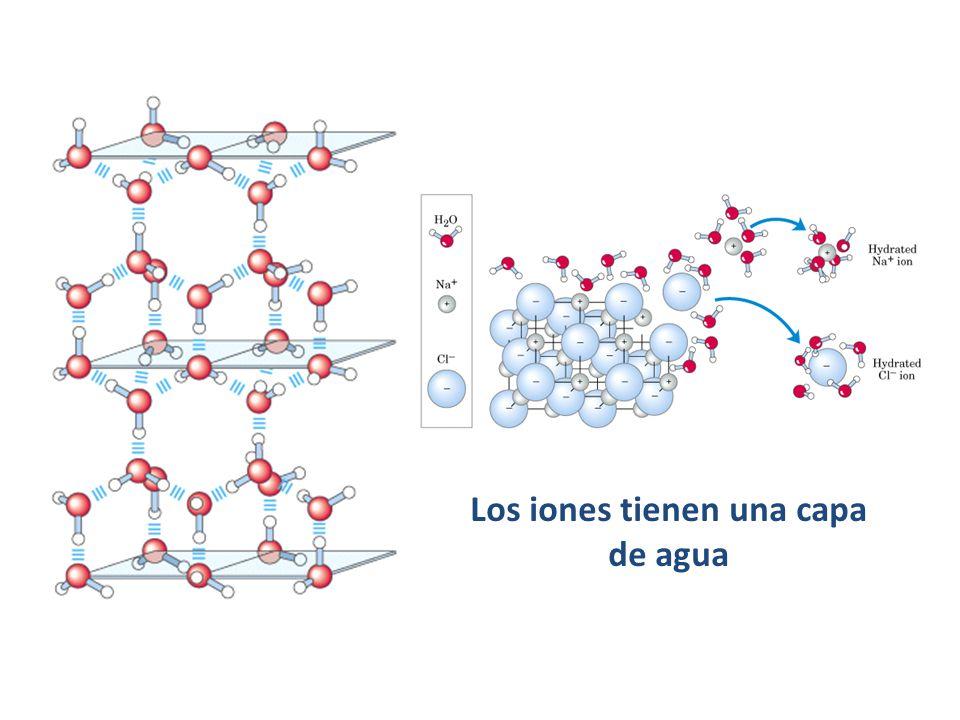 Los iones tienen una capa de agua