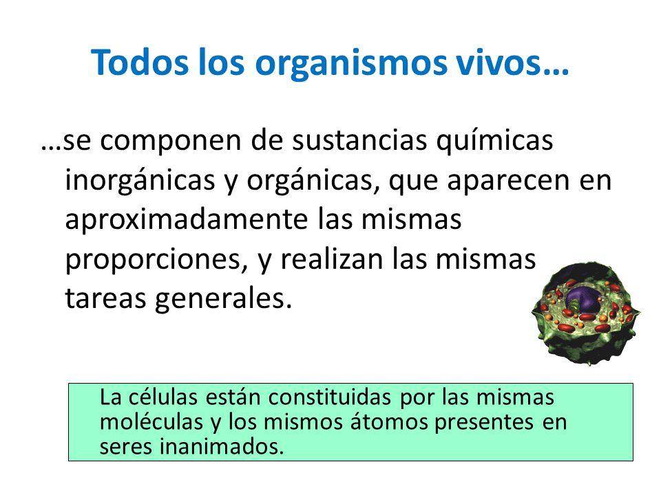 Todos los organismos vivos…