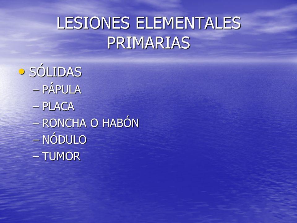 LESIONES ELEMENTALES PRIMARIAS