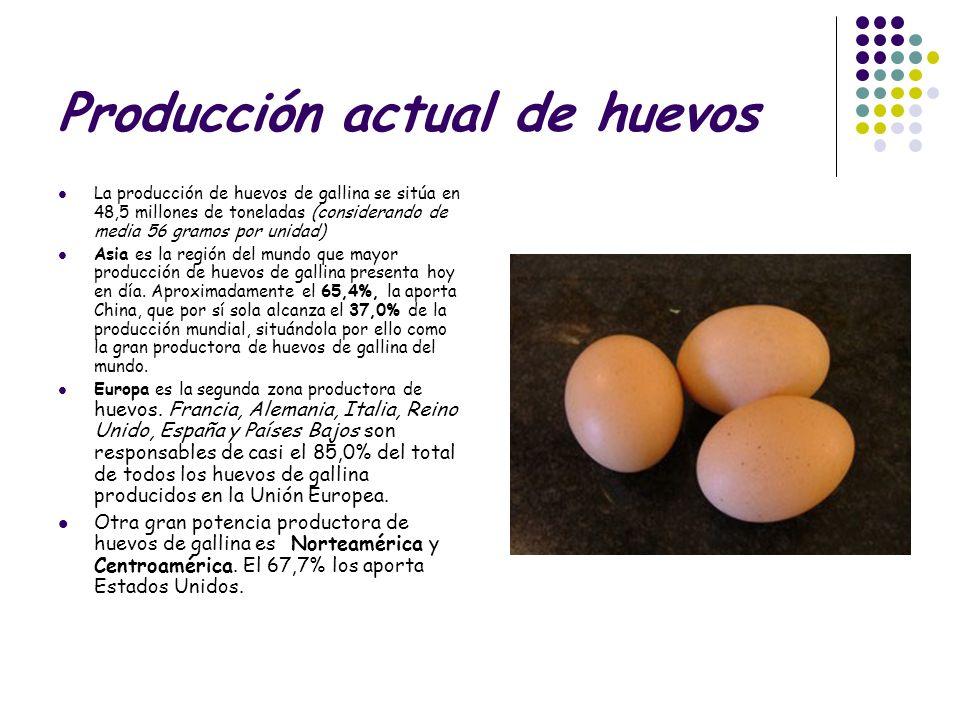 Producción actual de huevos