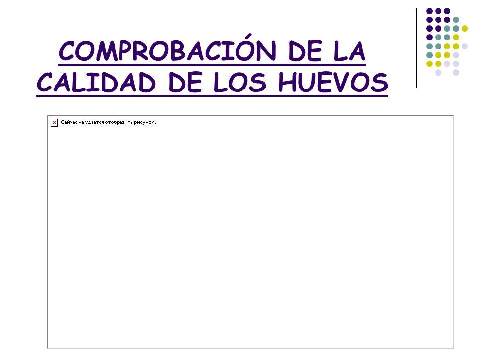 COMPROBACIÓN DE LA CALIDAD DE LOS HUEVOS