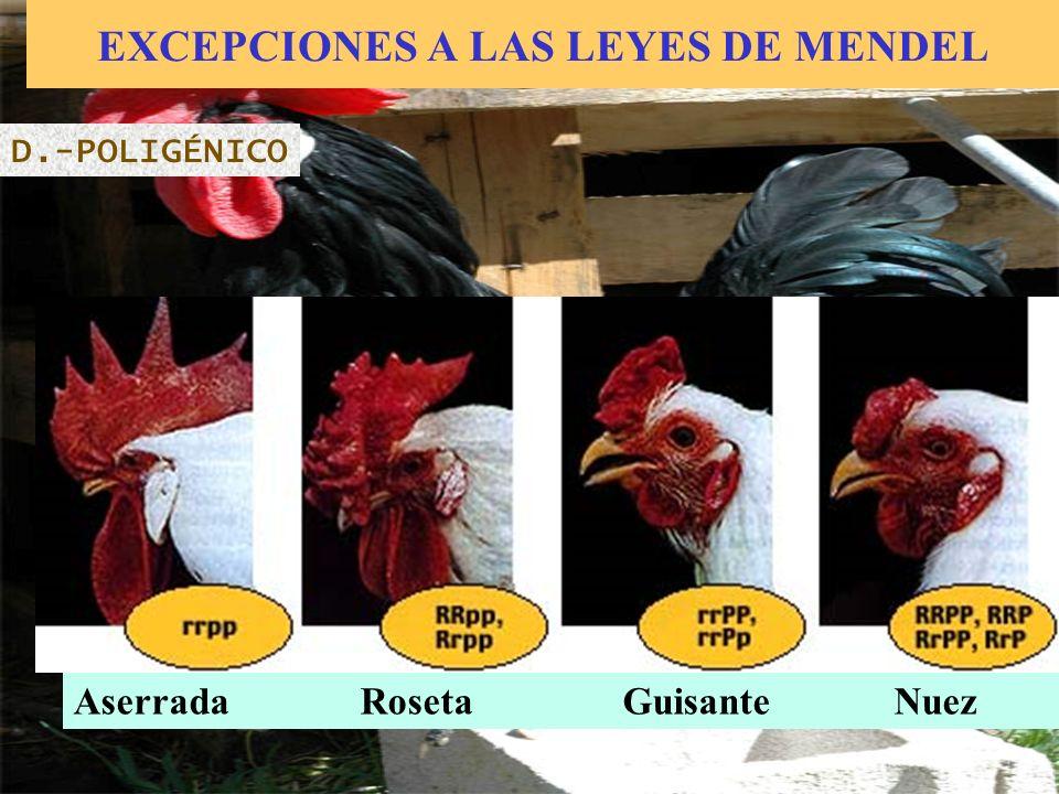 EXCEPCIONES A LAS LEYES DE MENDEL