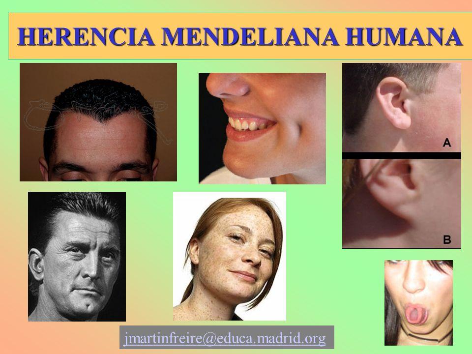 HERENCIA MENDELIANA HUMANA