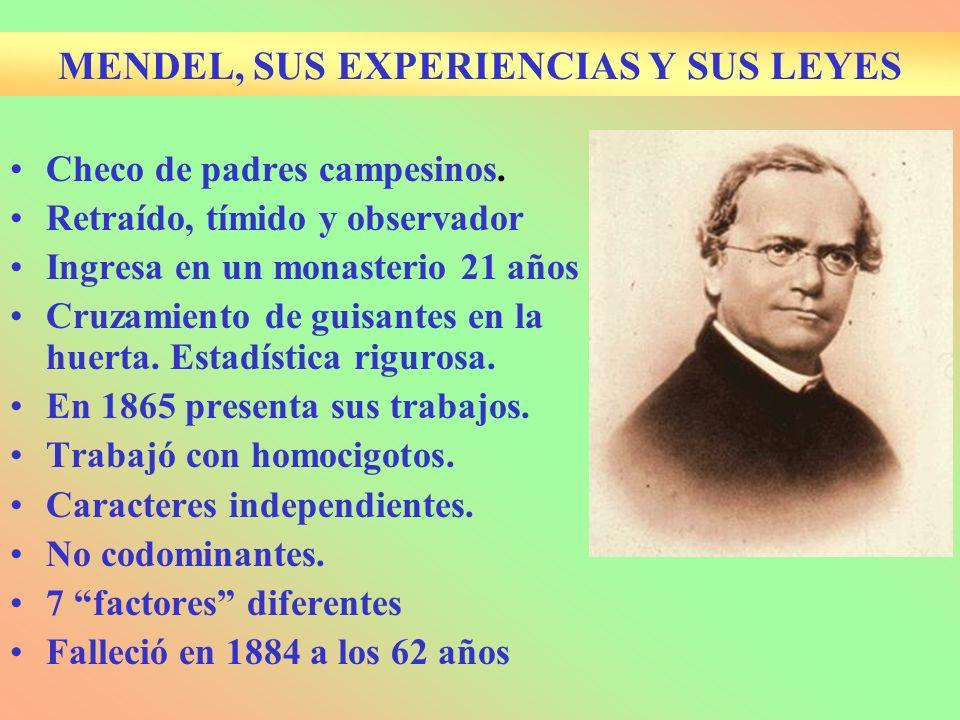 MENDEL, SUS EXPERIENCIAS Y SUS LEYES