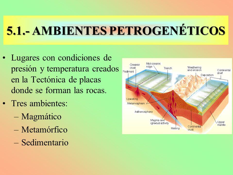 5.1.- AMBIENTES PETROGENÉTICOS