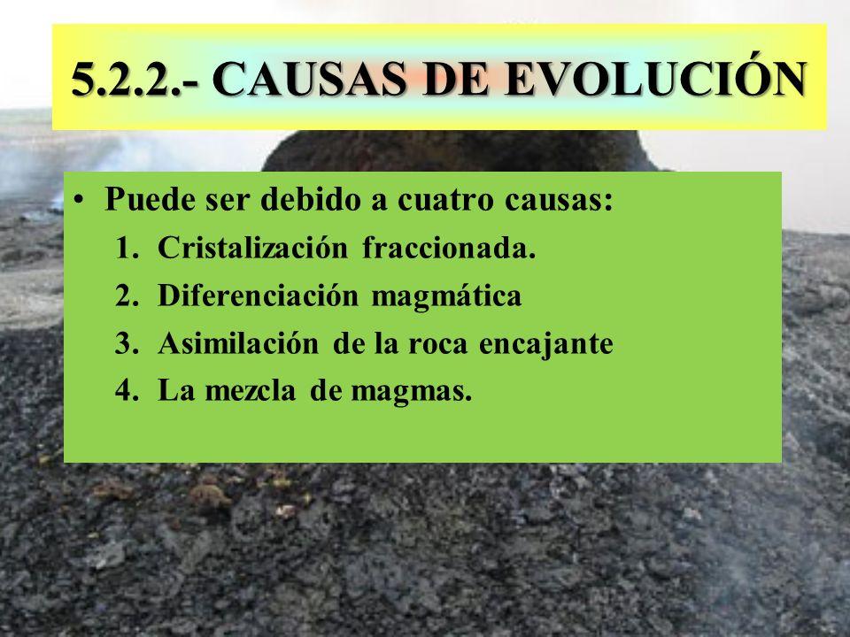 5.2.2.- CAUSAS DE EVOLUCIÓN Puede ser debido a cuatro causas: