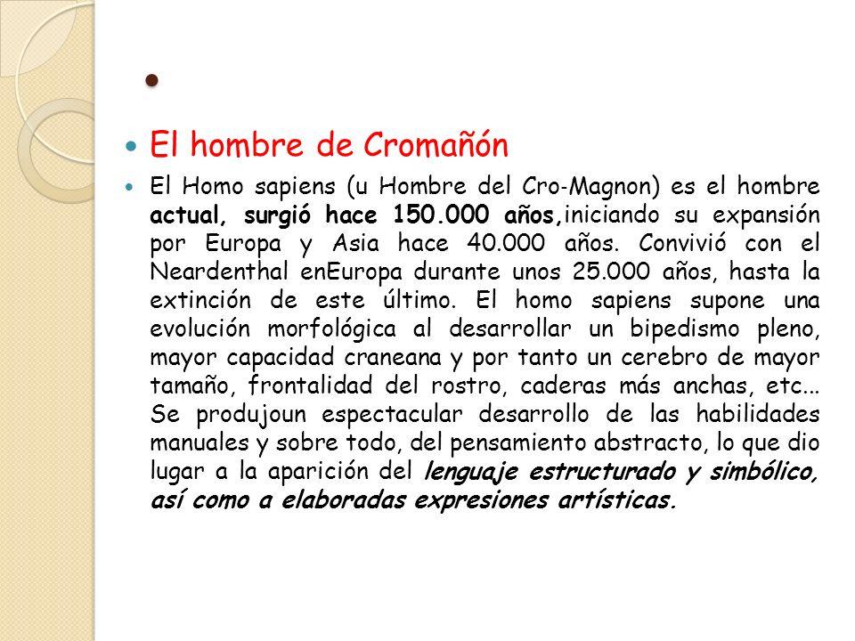 • El hombre de Cromañón.