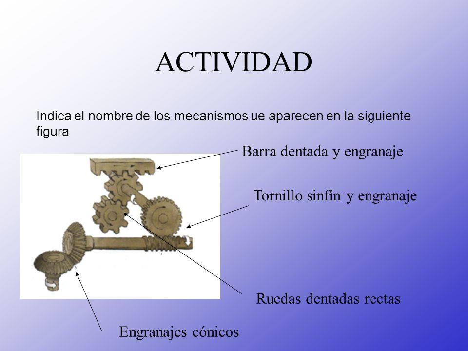 ACTIVIDAD Barra dentada y engranaje Tornillo sinfín y engranaje