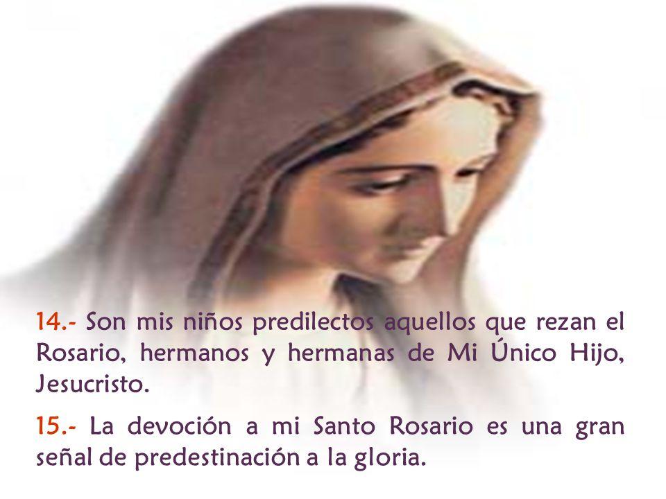 14.- Son mis niños predilectos aquellos que rezan el Rosario, hermanos y hermanas de Mi Único Hijo, Jesucristo.