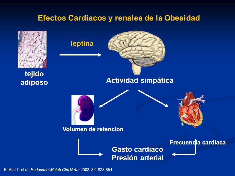 Efectos Cardiacos y renales de la Obesidad