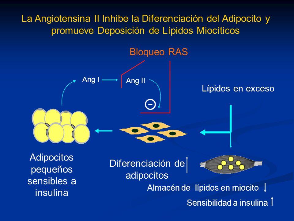 Sensibilidad a insulina