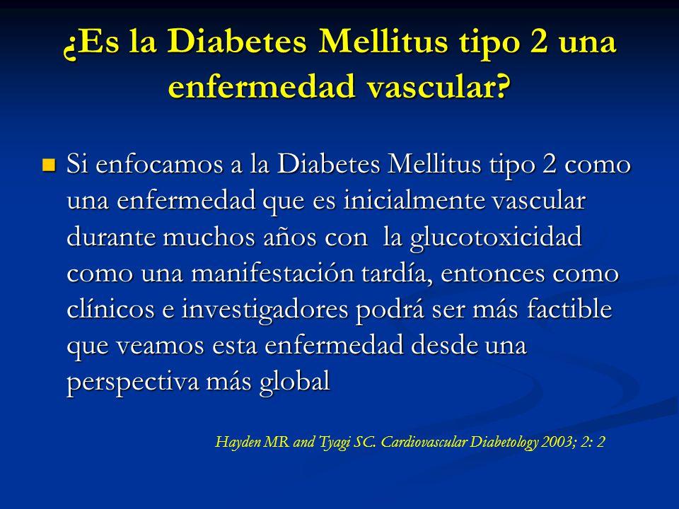 ¿Es la Diabetes Mellitus tipo 2 una enfermedad vascular