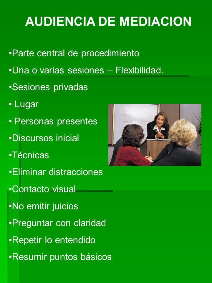 AUDIENCIA DE MEDIACION