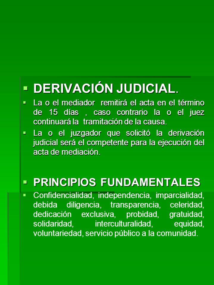 DERIVACIÓN JUDICIAL. PRINCIPIOS FUNDAMENTALES