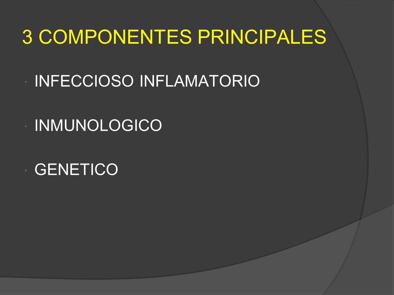 3 COMPONENTES PRINCIPALES