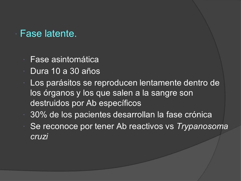 Fase latente. Fase asintomática Dura 10 a 30 años