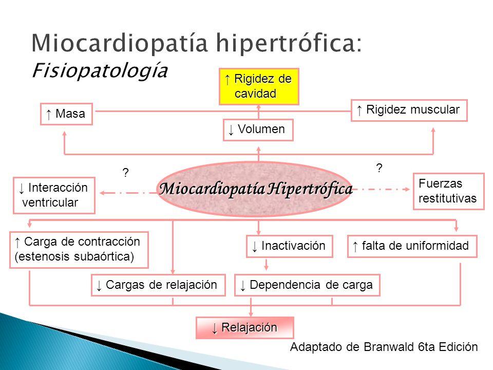 Miocardiopatía hipertrófica: Fisiopatología