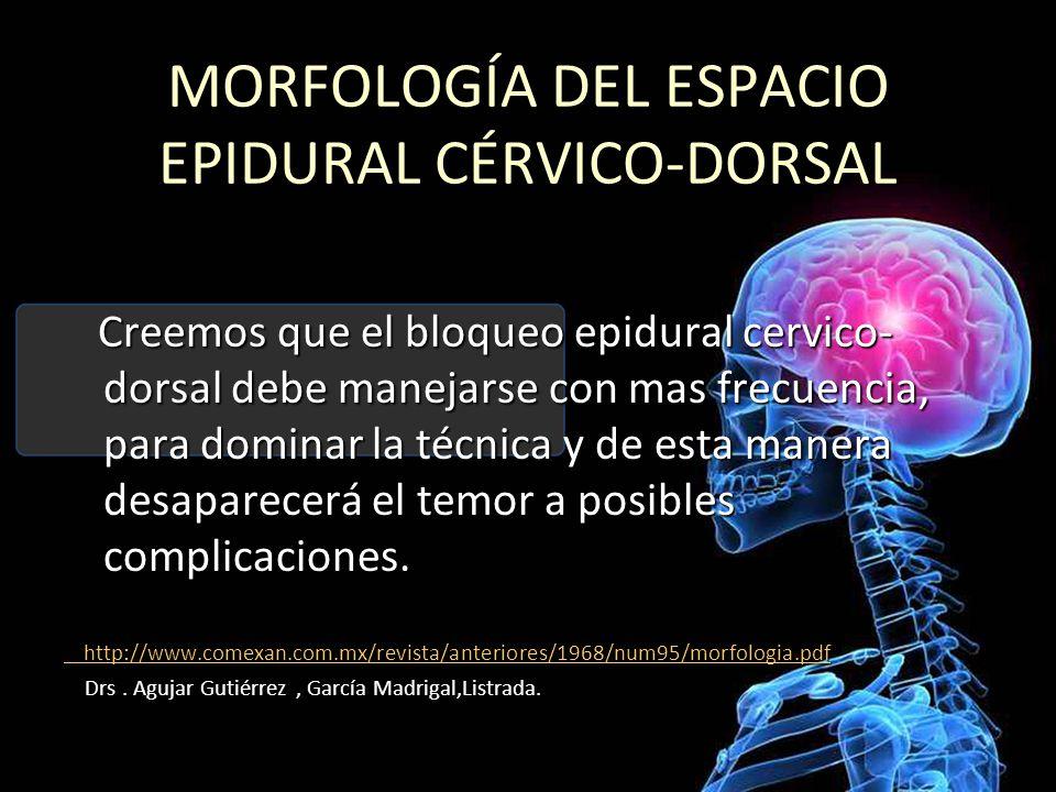MORFOLOGÍA DEL ESPACIO EPIDURAL CÉRVICO-DORSAL