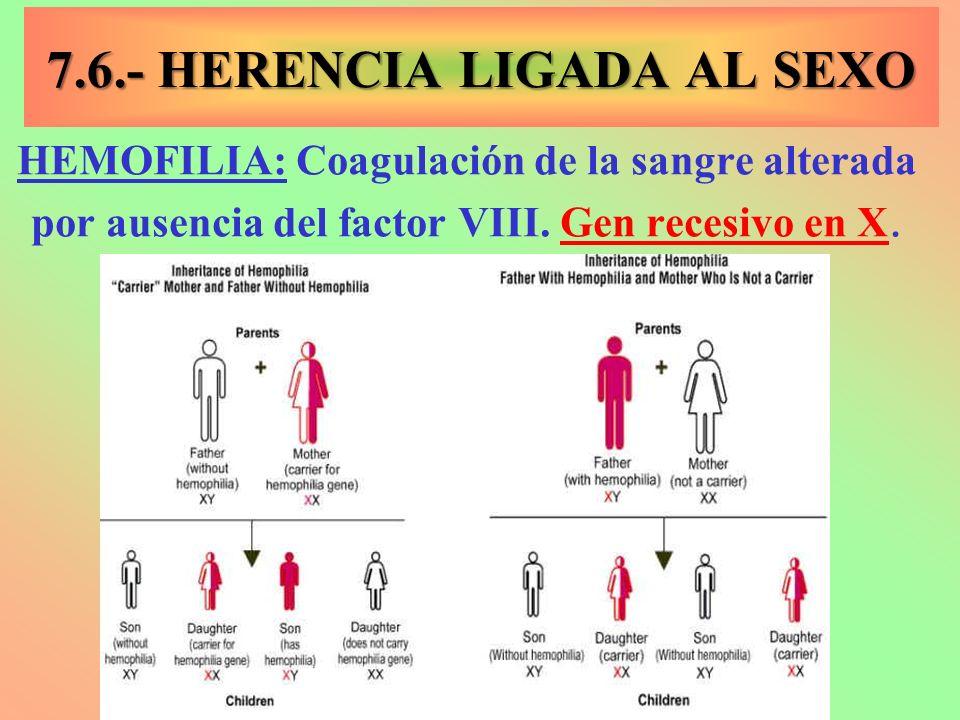 7.6.- HERENCIA LIGADA AL SEXO