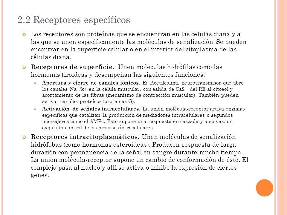 2.2 Receptores específicos