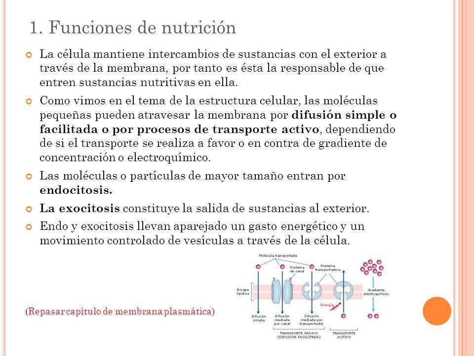 1. Funciones de nutrición