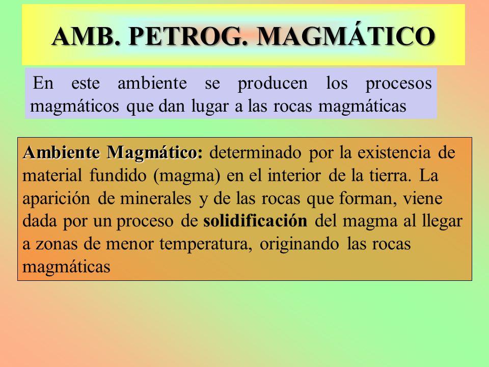 AMB. PETROG. MAGMÁTICO En este ambiente se producen los procesos magmáticos que dan lugar a las rocas magmáticas.