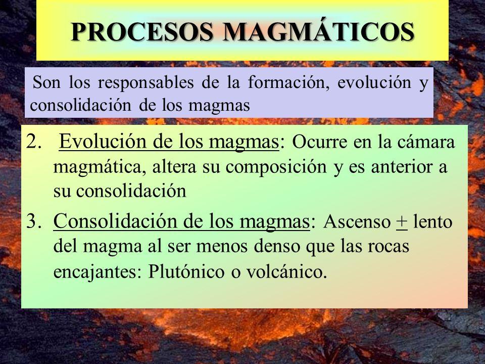 PROCESOS MAGMÁTICOS Son los responsables de la formación, evolución y consolidación de los magmas.