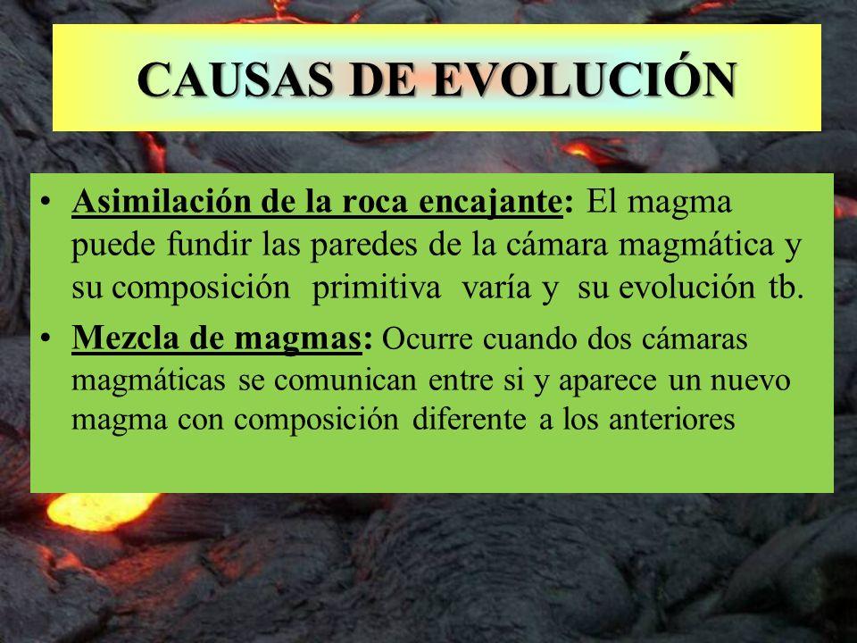 CAUSAS DE EVOLUCIÓN