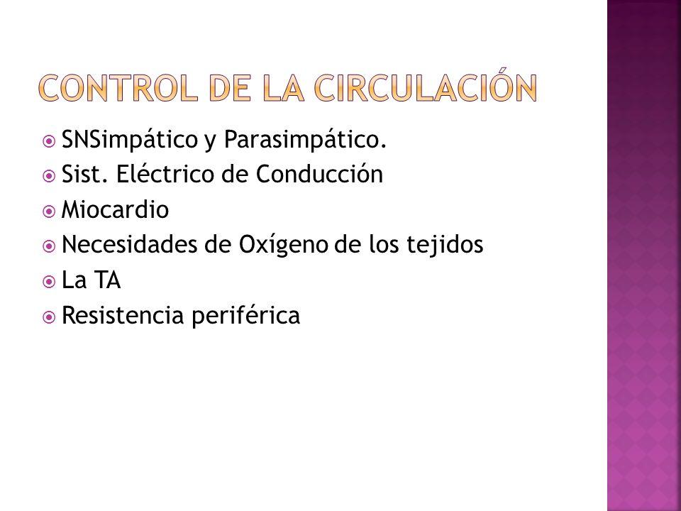 CONTROL DE LA CIRCULACIÓN