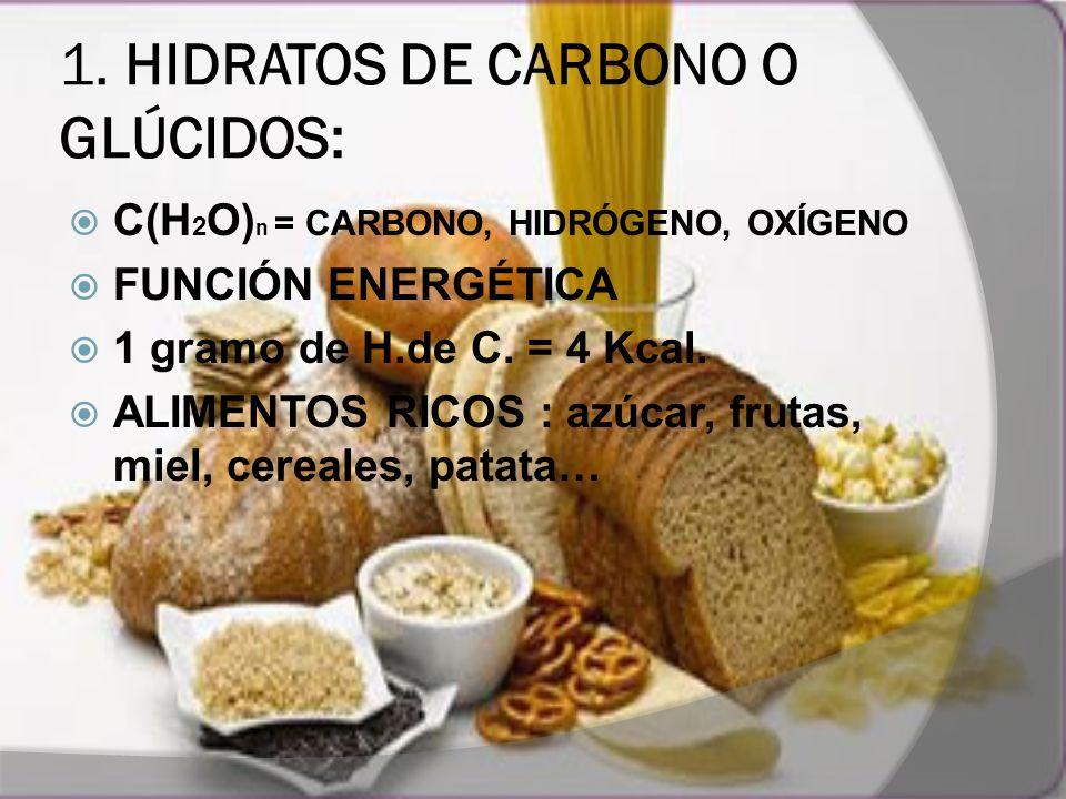 1. HIDRATOS DE CARBONO O GLÚCIDOS: