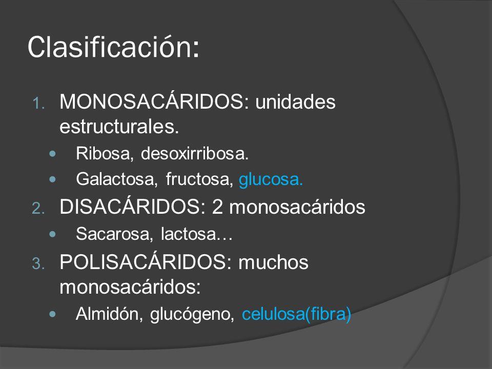 Clasificación: MONOSACÁRIDOS: unidades estructurales.