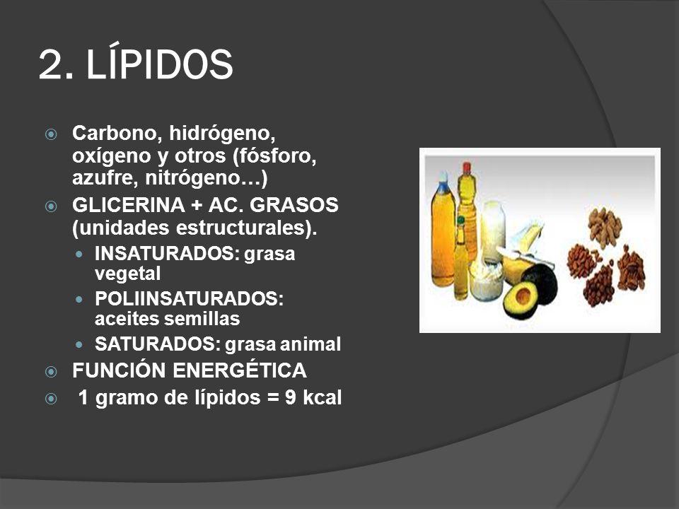 2. LÍPIDOS Carbono, hidrógeno, oxígeno y otros (fósforo, azufre, nitrógeno…) GLICERINA + AC. GRASOS (unidades estructurales).