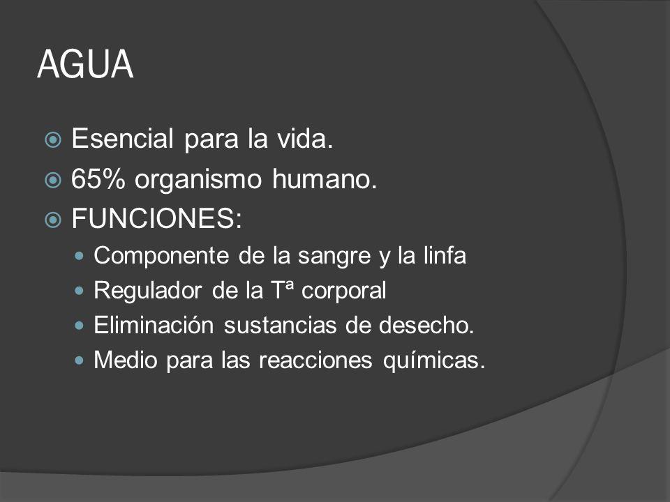 AGUA Esencial para la vida. 65% organismo humano. FUNCIONES: