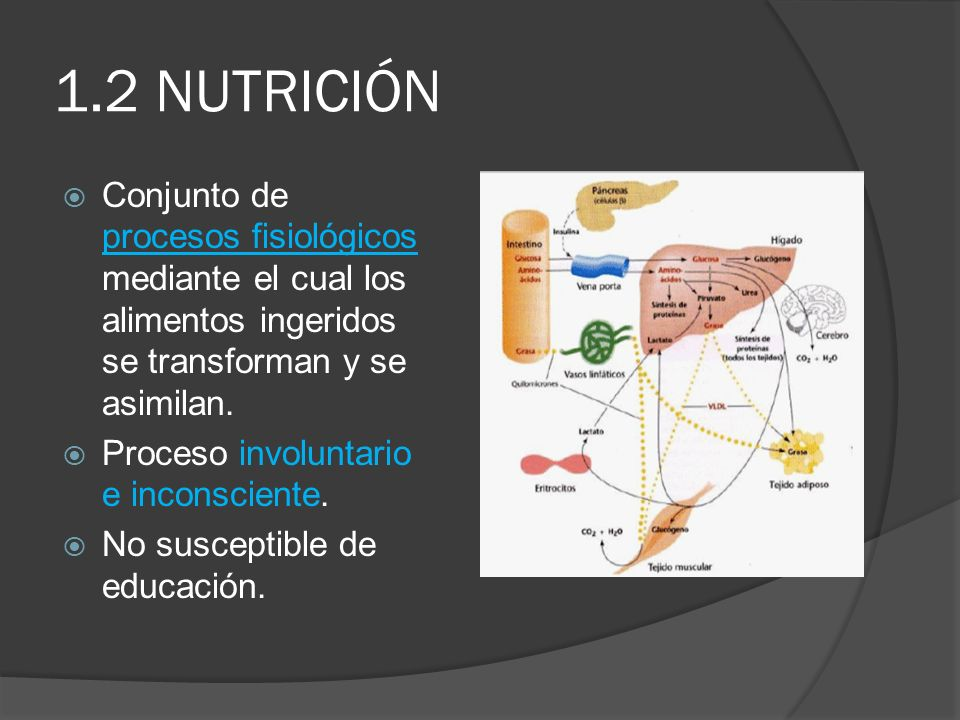 1.2 NUTRICIÓN Conjunto de procesos fisiológicos mediante el cual los alimentos ingeridos se transforman y se asimilan.