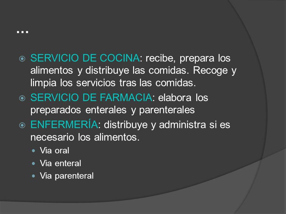 … SERVICIO DE COCINA: recibe, prepara los alimentos y distribuye las comidas. Recoge y limpia los servicios tras las comidas.