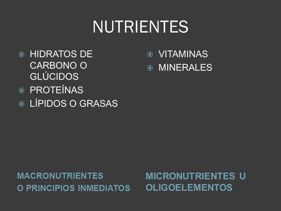 NUTRIENTES HIDRATOS DE CARBONO O GLÚCIDOS PROTEÍNAS LÍPIDOS O GRASAS