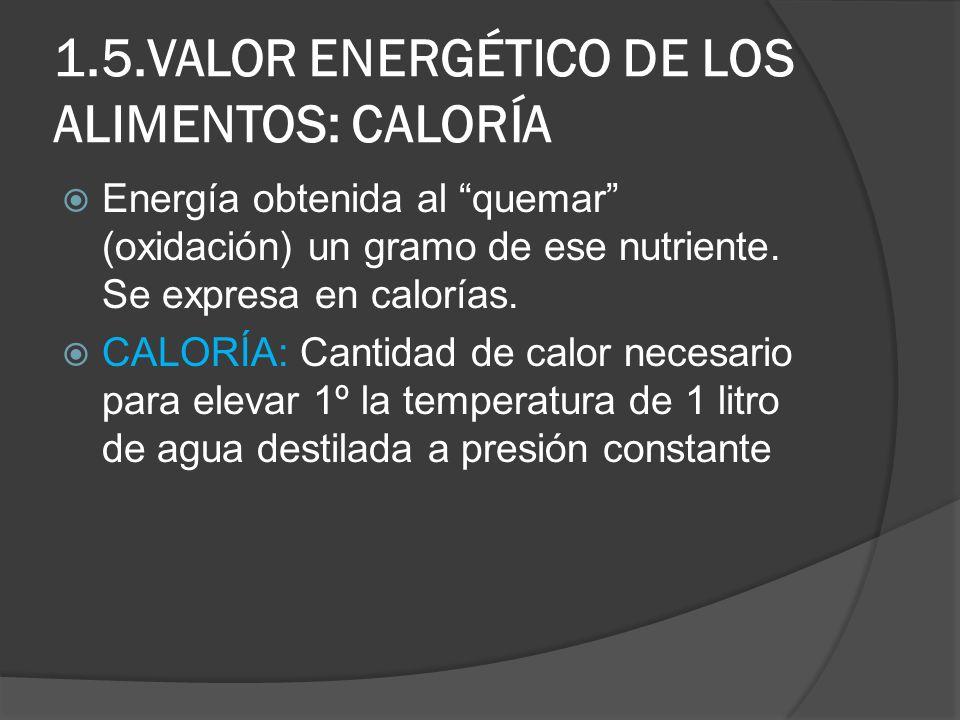 1.5.VALOR ENERGÉTICO DE LOS ALIMENTOS: CALORÍA